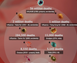 Infographic: A brilliant representation comparing Ebola with other disease on Contagious vs. Fatality rate parameter